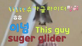 [kobo jeong]…
