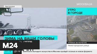 Актуальные новости мира за 6 августа: Австралию накрыл снегопад - Москва 24