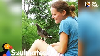 This Pigeon Made Her Mom's Life Complete | The Dodo Soulmates