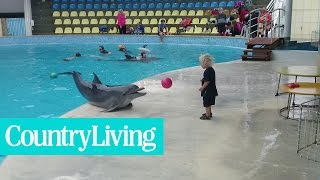 Adorable Toddler Plays Fetch With Playful Dolphin | Country Living