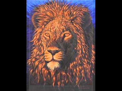 Bushman - Man A Lion