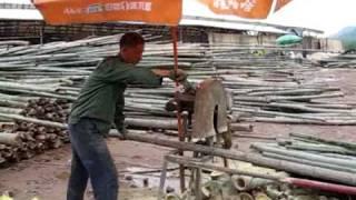 Chinese Bamboo to Beams