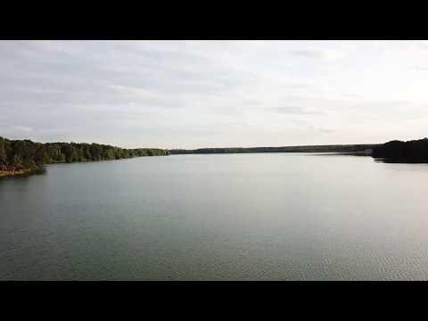 Купавна. Озеро Бисерово. Чайки. Съемка с квадрокоптера. Часть 1