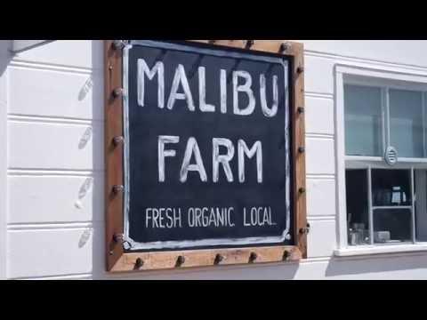 Malibu Farm Cafe at the Pier in California