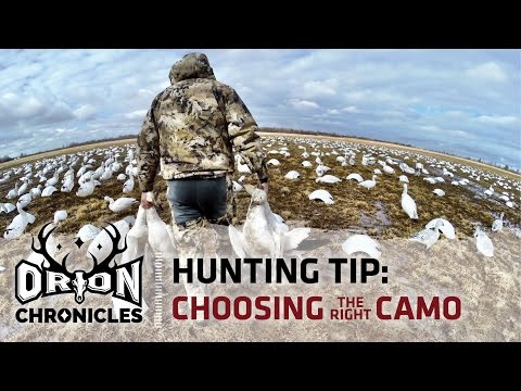 Hunting Tip | How To Choose Camo For Hunting