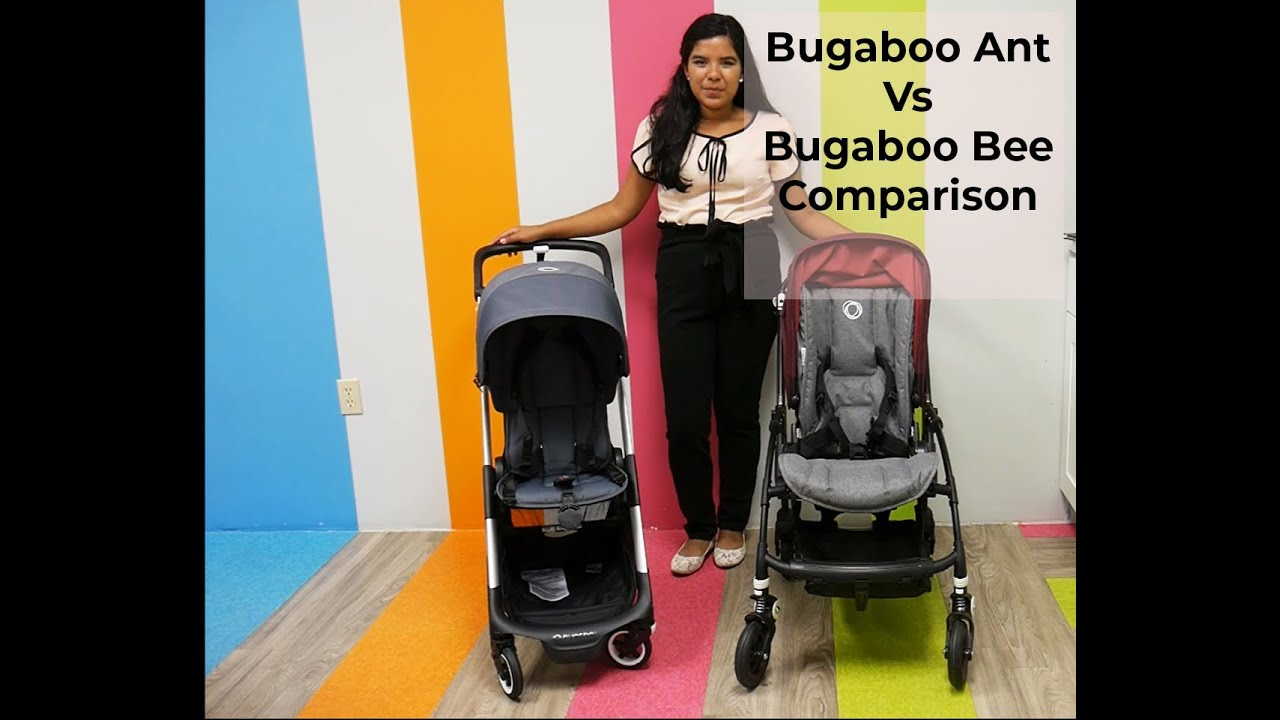 Compare the Bugaboo Ant Vs Bugaboo Bee Strollers! - YouTube