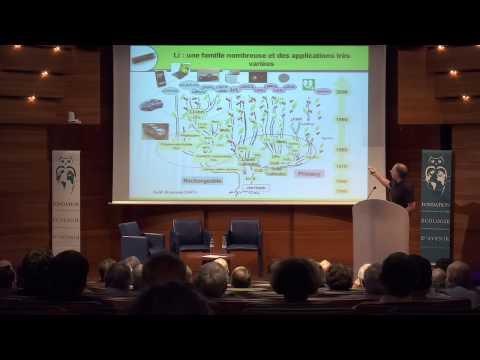 Dominique Larcher: Le stockage électrochimique de l'Energie.