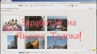 Как заработать деньги на Яндекс Толока