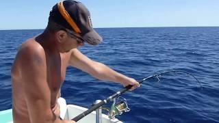 Daiwa saltiga deep expedition 56 s Vs Thon / Tuna