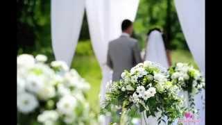 Игорь Добролевский Песня Свадьба(Лучшие моменты свадьбы)