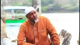 Download Ethiopian ሙሀመድ አወል ሳላህ አዲስ ምርጥ ነሽዳ Mp3