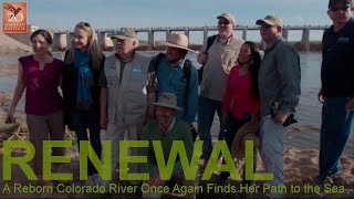 RENEWAL - A Reborn Colorado River Once Again Finds Her Path to the Sea