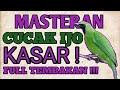 Masteran Cucak Ijo Tembakan Kasar  Mp3 - Mp4 Download