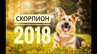 СКОРПИОН 2018. Самый точный гороскоп онлайн для всех