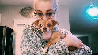 Country Star RaeLynn Pleads For Help Finding Her Missing Dog