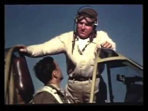 HOW TO FLY THE P-40 Warhawk