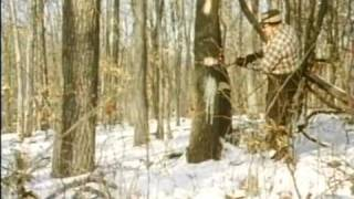 Return of the Wild Turkey  (1970)