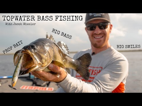 The BEST Topwater Fishing Lure That You DONT Throw