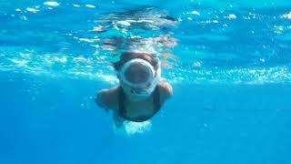 Подводный мир Красного моря 12 07 2020 Шарм эль Шейх Египет