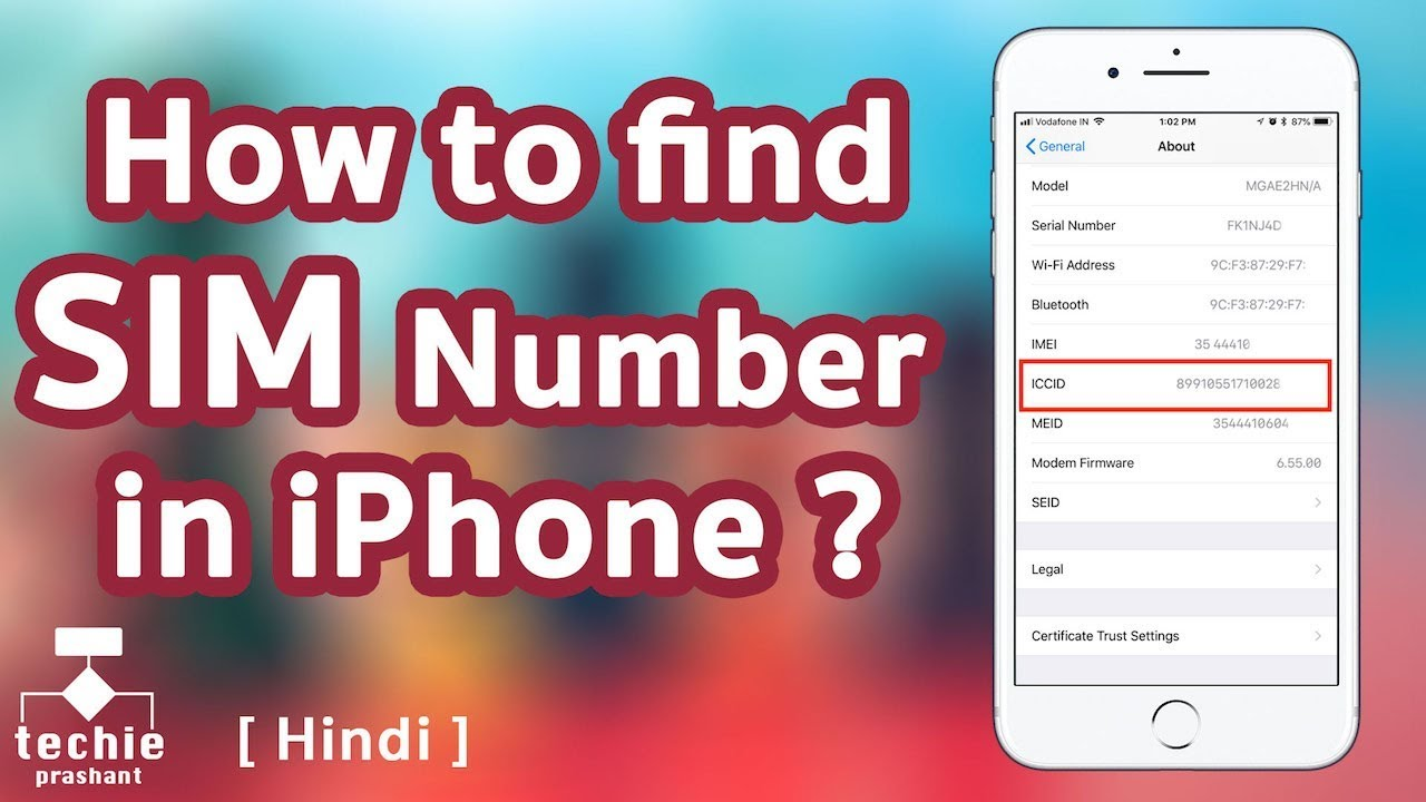 How to Find ICCID or SIM Number from iPhone  HINDI