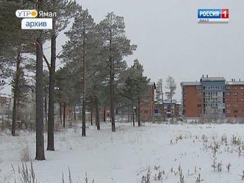 Деньги вместо участка: какие выплаты предусмотрены для многодетных семей на Ямале