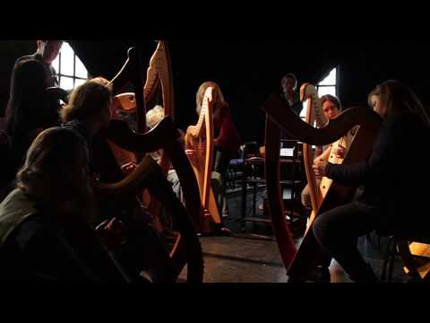 Early Irish Harp Discovery Day 10 March 2018 Galway Ireland