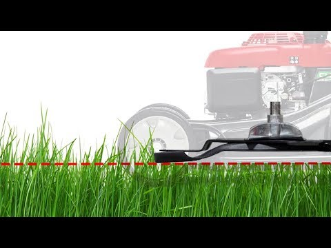Lawn Mower Cut Quality