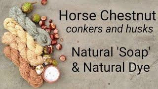 Horse Chestnut, natural 'soap' & natural dye