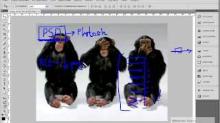 Мультимедийная школа Adobe Photoshop Урок №3 Основные форматы файлов