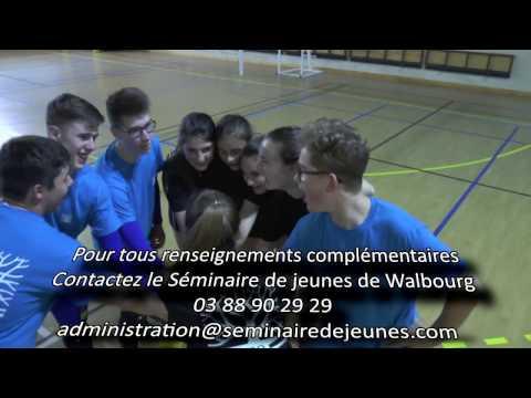 Vidéo : Découvrez la nouvelle section Volley du Lycée