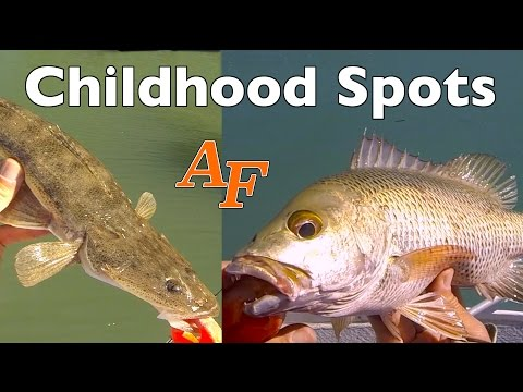 Childhood spot re visited after 30 years Andy's Fish Video EP.334