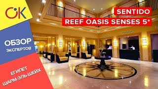 Sentido Reef Oasis Senses 5 ЕГИПЕТ Шарм эль Шейх обзор и отзыв об отеле