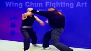 Wing Chun kung fu - Fight Art Lesson 17