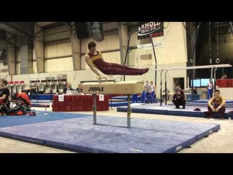 Highlights: Gopher Men's Gymnastics at Arnold Challenge