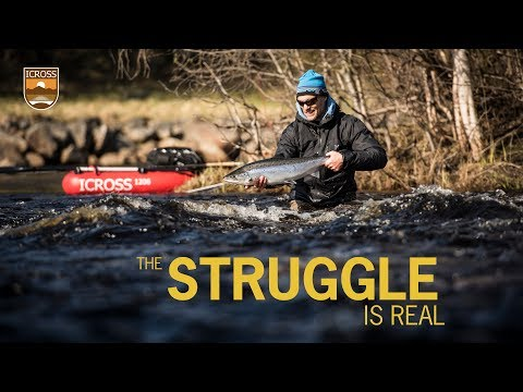 ICROSS - the stuggle is real