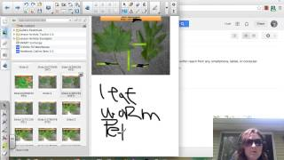 Final Clip Flipped Smartnotebook Thumbnail