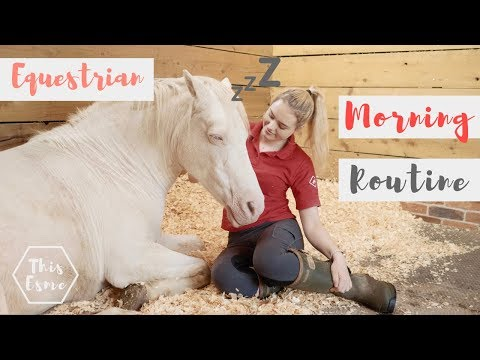 MORNING ROUTINE of an Equestrian | Summer 2018 | This Esme