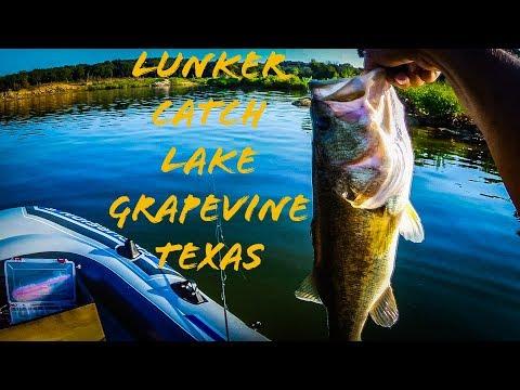 LUNKER LARGEMOUTH BASS CATCH ON LAKE GRAPEVINE TEXAS!!!