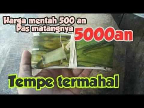 resep-tempe-goreng-paling-unik---saking-enaknya-secuil-di-brandol-5000