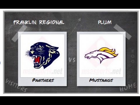 PBSD Boys Basketball Franklin Regional vs Plum January 13, 2015