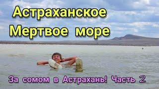 За сомом в Астрахань часть 2 A trip to Astrakhan for catfish part 2