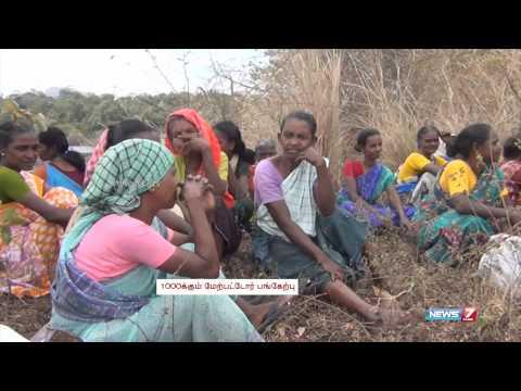 Kani Tribals in Kanyakumari seek to establish their fishing rights