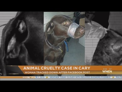 Cary Police cite woman after photo posted of dog with mouth taped shut