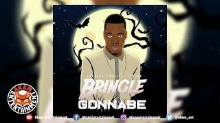 Gonnabe - Bringle - February 2019