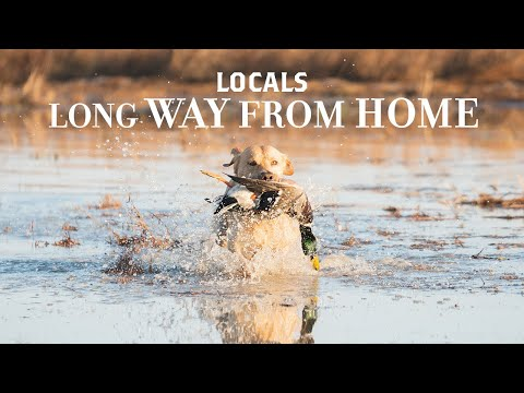 Locals - Long Way From Home - Season 1 Trailer (Duck Hunting)