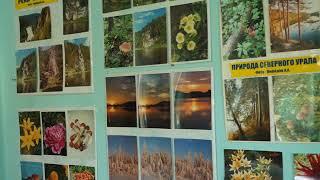 Красоты уральской природы на выставке в комплексном Центре соцобслуживания населения
