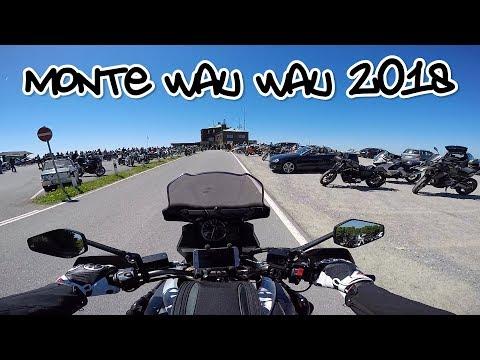 Tour zum Köterberg | #RAV 158