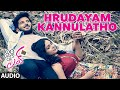 Hrudayam Kannulatho Full Song (Audio) ||