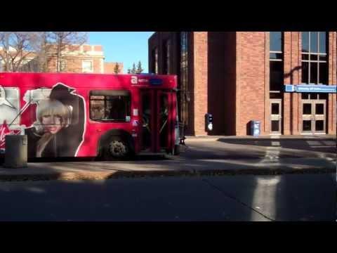 UAlberta Campus Transit Tips