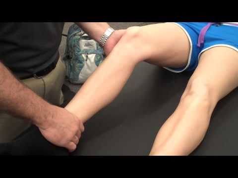 Knee Valgus Stress Test